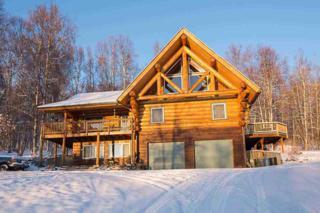 878  High Grade Way  , Fairbanks, AK 99712 (MLS #126966) :: Madden Real Estate