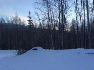 1627  Spinach Creek  , Fairbanks, AK 99709 (MLS #127055) :: Madden Real Estate