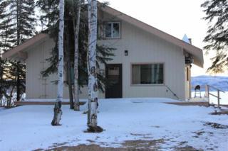 9732  Salcha Drive  , Fairbanks, AK 99714 (MLS #127056) :: Madden Real Estate