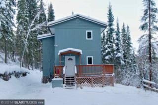 2990  Chena Ester Ditch Road  , Fairbanks, AK 99709 (MLS #127171) :: Madden Real Estate