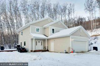 1305  Wideview Road  , Fairbanks, AK 99709 (MLS #127183) :: Madden Real Estate