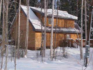 942  Starling Court  , Fairbanks, AK 99712 (MLS #127676) :: Madden Real Estate