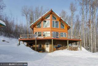 1265  Grouse Court  , Fairbanks, AK 99709 (MLS #127726) :: Madden Real Estate