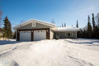 2323  Blue Sparkle  , North Pole, AK 99705 (MLS #127745) :: Madden Real Estate