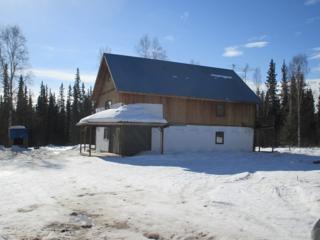 125  Marten Drive  , Fairbanks, AK 99712 (MLS #127781) :: Madden Real Estate