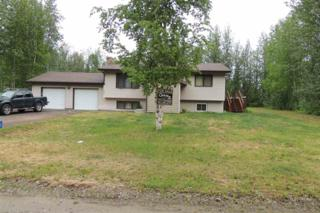 3440  Hoover Road  , North Pole, AK 99705 (MLS #127788) :: Madden Real Estate
