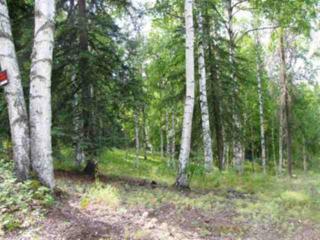 2323  Giancursio Road  , Fairbanks, AK 99709 (MLS #127790) :: Madden Real Estate