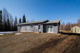 1155  Choctaw Road  , North Pole, AK 99705 (MLS #128067) :: Madden Real Estate