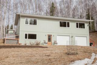 193  Crest Drive  , Fairbanks, AK 99712 (MLS #128071) :: Madden Real Estate