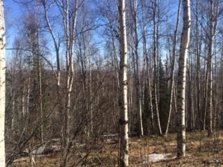 736  Ridgepointe Drive  , Fairbanks, AK 99709 (MLS #128075) :: Madden Real Estate