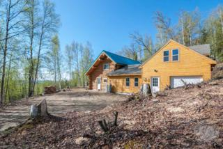 1435  Yellowknife Dr.  , Fairbanks, AK 99709 (MLS #128359) :: Madden Real Estate