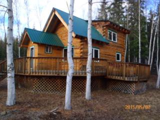 212  Skye-Lee Way  , Fairbanks, AK 99712 (MLS #128362) :: Madden Real Estate
