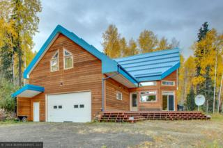 1220  Violet Drive  , Fairbanks, AK 99712 (MLS #128378) :: Madden Real Estate