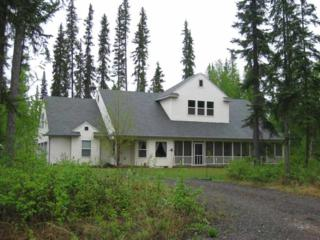 2922  Doughchee Avenue  , North Pole, AK 99705 (MLS #128379) :: Madden Real Estate