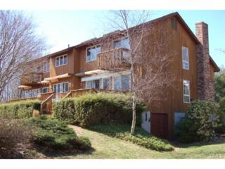 7  Tory Lane  , Newtown, CT 06470 (MLS #99080397) :: The CT Home Finder at Keller Williams