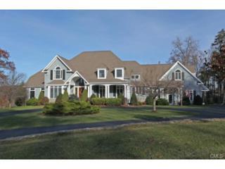 15  Falls Drive  , Brookfield, CT 06804 (MLS #99086704) :: The CT Home Finder at Keller Williams