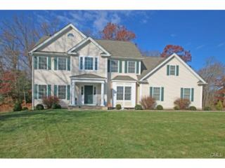 2  Quail Hollow Lane  , Newtown, CT 06482 (MLS #99086860) :: The CT Home Finder at Keller Williams