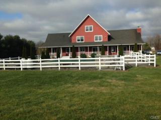 351  Killorin Road  , Watertown, CT 06795 (MLS #99088094) :: The CT Home Finder at Keller Williams
