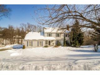 9  Glenbrook Drive  , New Milford, CT 06776 (MLS #99093240) :: The CT Home Finder at Keller Williams