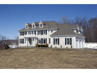 1  Meadowridge Drive  , New Fairfield, CT 06812 (MLS #99096593) :: Carrington Real Estate Services
