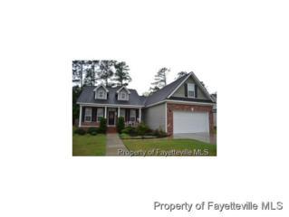 917  Satinwood Ct  , Fayetteville, NC 28312 (MLS #431525) :: Weichert Realtors, On-Site Associates