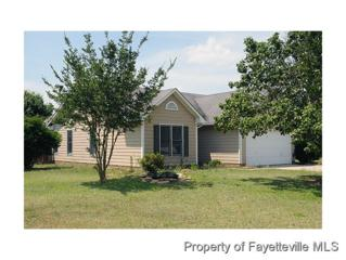 216  Sandy Bottom Ln  , Raeford, NC 28376 (MLS #426134) :: Weichert Realtors, On-Site Associates