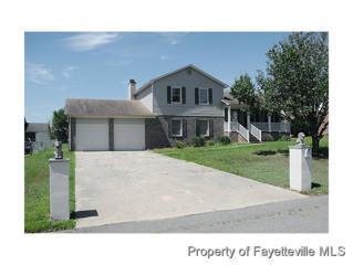 834  Egypt Rd  , Fayetteville, NC 28314 (MLS #430849) :: Weichert Realtors, On-Site Associates