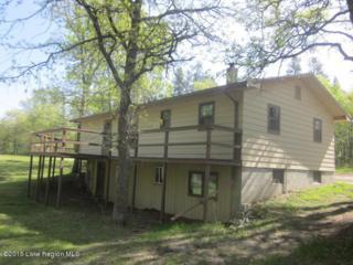 14367  Stocking Lake Road  , Menahga, MN 56464 (MLS #20-15281) :: Ryan Hanson Homes Team- Keller Williams Realty Professionals