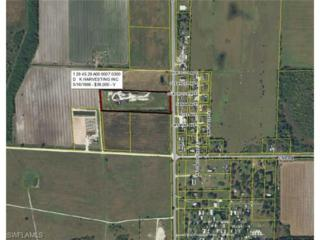 15800  S Sr 29  , Felda, FL 33975 (MLS #214058413) :: Royal Shell Real Estate
