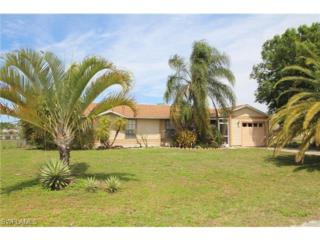407 NE 22nd Ter  , Cape Coral, FL 33909 (MLS #215020332) :: RE/MAX Realty Team