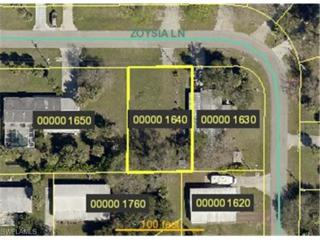 2495  Zoysia Ln  , North Fort Myers, FL 33917 (MLS #215020830) :: RE/MAX Realty Team