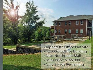11700  Atlantis Place  , Alpharetta, GA 30022 (MLS #5350906) :: North Atlanta Home Team