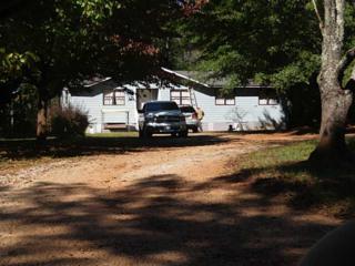 1053  Davenport Road  , Braselton, GA 30517 (MLS #5358633) :: The Buyer's Agency