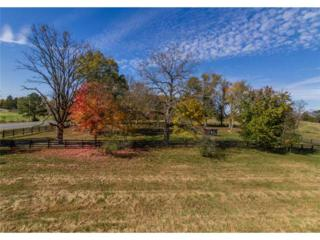 0  Red Bud Road  , Calhoun, GA 30701 (MLS #5370022) :: ERA Sunrise Realty
