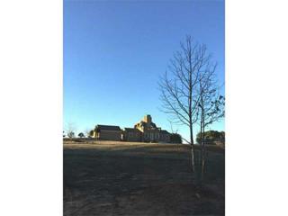 1680  Lee Peters Road  , Loganville, GA 30052 (MLS #5388668) :: ERA Sunrise Realty