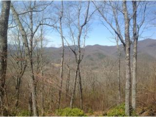 0  Hightower Overlook  , Hiawassee, GA 30546 (MLS #5509331) :: The Zac Team @ RE/MAX Metro Atlanta