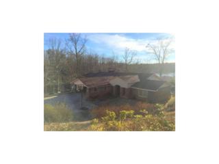 6031  Blackberry Lane  , Buford, GA 30518 (MLS #5514706) :: The Buyer's Agency