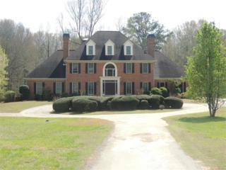 146  Morning Creek Road  , Fayetteville, GA 30238 (MLS #5516146) :: The Buyer's Agency