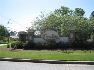 4086  James Lake Drive  , Conley, GA 30288 (MLS #5530970) :: The Zac Team @ RE/MAX Metro Atlanta
