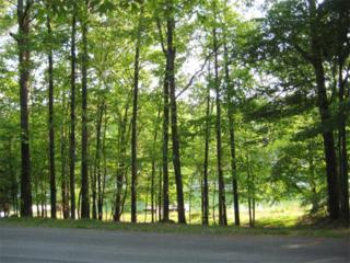 198  Lakeview Circle  , Waleska, GA 30183 (MLS #5535114) :: Path & Post - by Becky Babcock