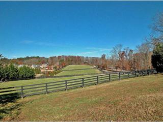 1865  Birmingham Road  , Alpharetta, GA 30004 (MLS #5395239) :: North Atlanta Home Team
