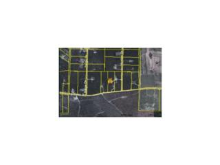 359  Whispering Pines Road  , Mauk, GA 31058 (MLS #5396896) :: The Zac Team @ RE/MAX Metro Atlanta