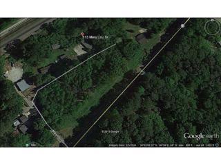 513  Mary Lou Street  , Suwanee, GA 30024 (MLS #5399066) :: North Atlanta Home Team