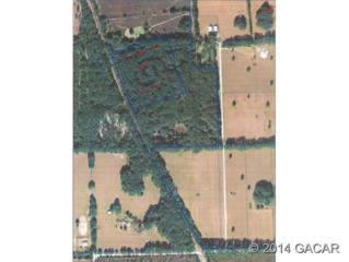 000  Main Street SW , High Springs, FL 32643 (MLS #356665) :: Florida Homes Realty & Mortgage