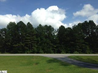 7  Highway 14 West  , Landrum, SC 29356 (#1288434) :: Hamilton & Co. of Keller Williams