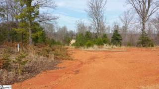Pink Dill Mill Road  , Greer, SC 29651 (#1289683) :: Sparkman Skillin ERA