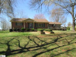 384  Blacksnake Rd  , Pickens, SC 29671 (#1292335) :: Hamilton & Co. of Keller Williams