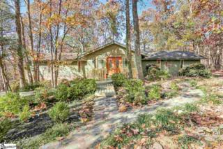 12  Paris Point Court  , Greenville, SC 29609 (#1293898) :: Hamilton & Co. of Keller Williams