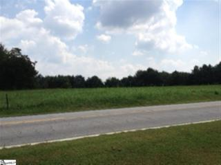 Highway 357  , Inman, SC 29349 (#1294098) :: Sparkman Skillin ERA