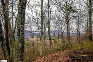 00  Packs Mountain Ridge Road  , Taylors, SC 29688 (#1296368) :: Hamilton & Co. of Keller Williams